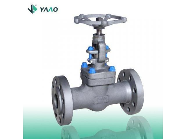 ISO 15761 Flanged Forged Globe Valve, 1/2-4 Inch, 150-2500 LB